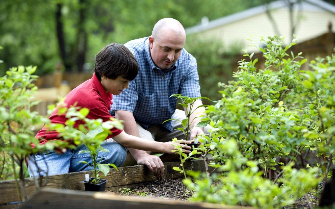 5 Tips To Help Prepare Your Garden For Spring