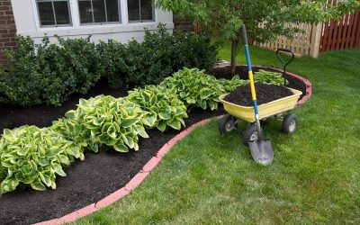 5 Tips for Spring Outdoor Home Maintenance