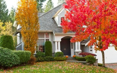 6 Tips for  Fall Curb Appeal